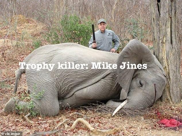 Thousands of social media users have accused Jines and professional hunter, Max