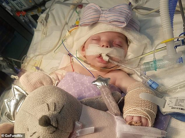 Shocking: Addilyn Tidwell remains in a medically induced coma after she sustained several broken bones and damage to her brain and other internal organs