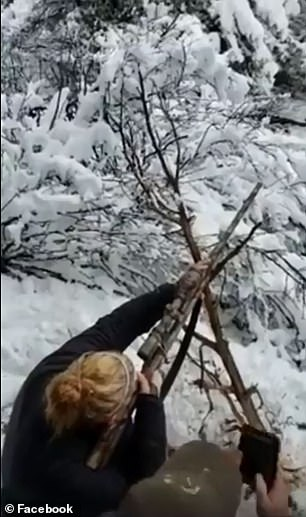 Shots from the video show the hunter shooting the lion from the top of a tree